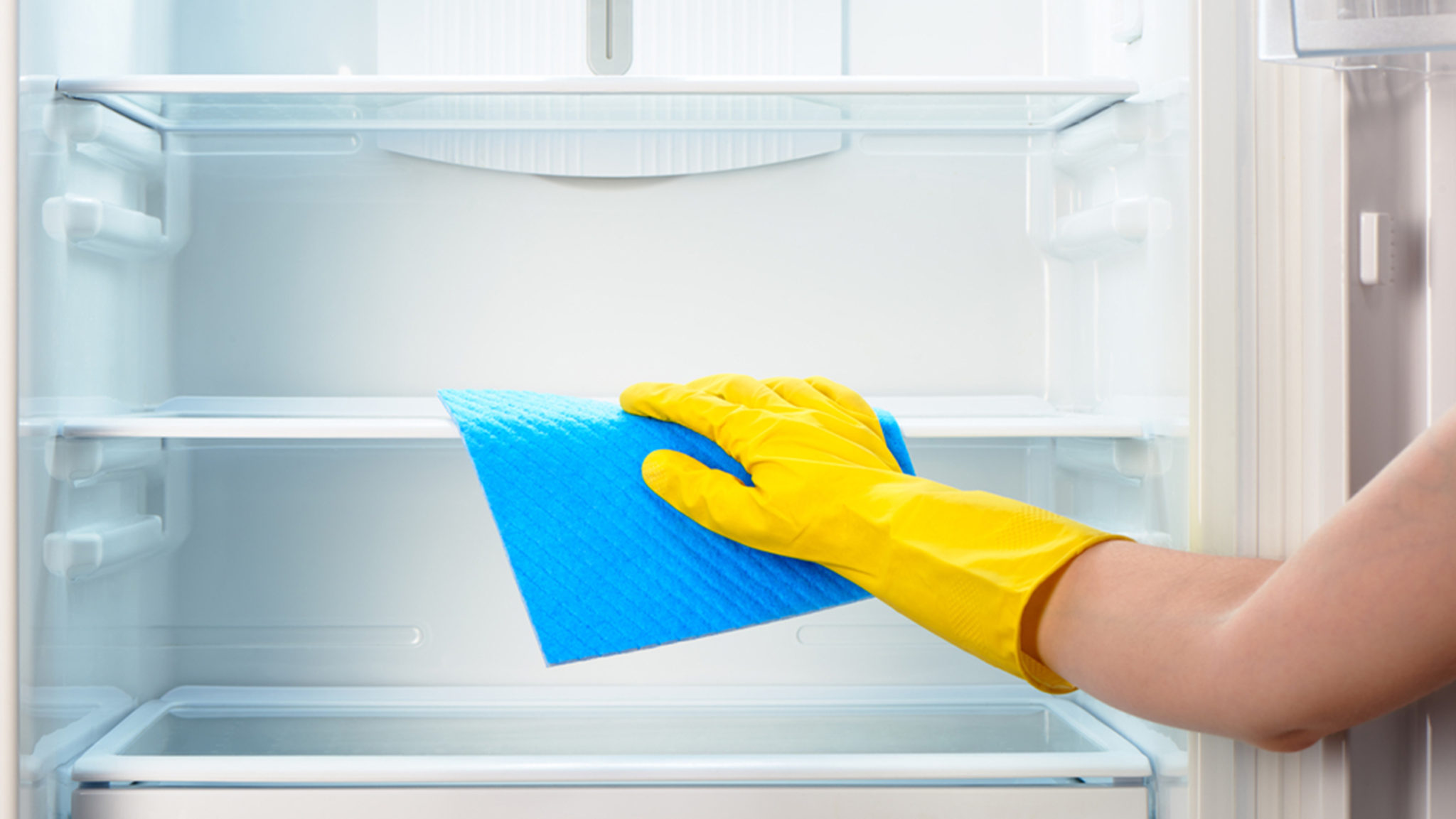 Woman's hand in yellow rubber protective glove cleaning white open empty refrigerator with blue rag ; Shutterstock ID 303843791; PO: TODAY.com